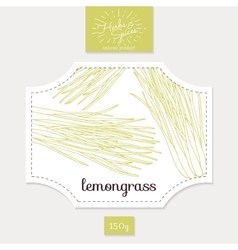 Product sticker with hand drawn lemongrass leaves vector image