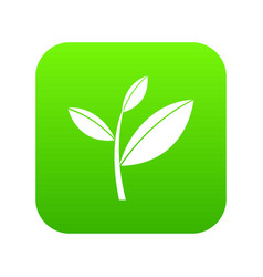 tea leaf sprout icon digital green vector image