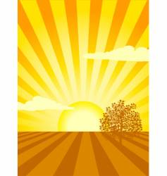 sunset over cultivated field vector image vector image