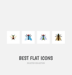 Flat icon housefly set of mosquito bluebottle vector