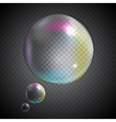 Transparent Bubbles on Gray Background vector