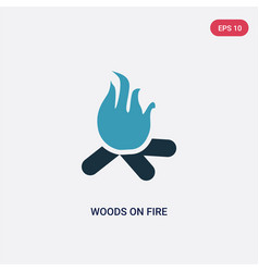 two color woods on fire icon from meteorology vector image
