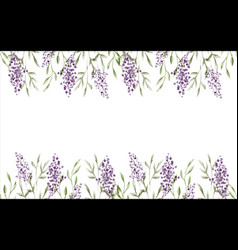 watercolor lavender flower background isolated vector image
