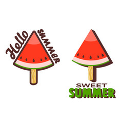 Watermelon popsicle stick vector
