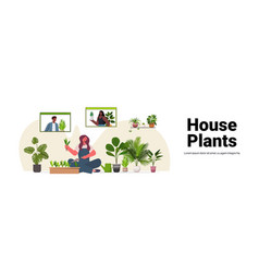 woman planting houseplants in pot housewife caring vector image