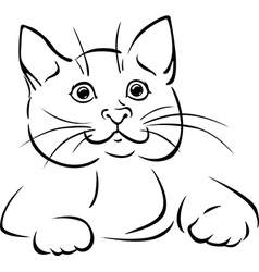 cat - black outline vector image vector image