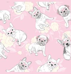 dog french bulldog heart sunglasses glasses icon vector image