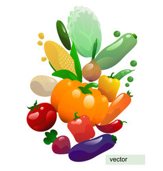 white poster with vegetables vector image