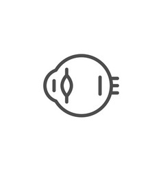 eyeball line icon vector image