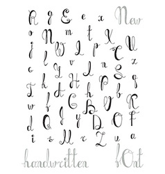 Hand-written alphabet Calligraphic font Letters vector image