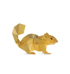 Abstract squirrel vector image