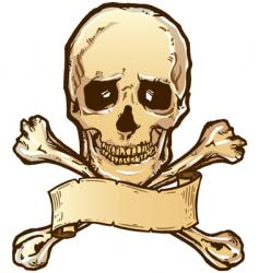 skull crossbones banner vector image vector image