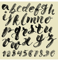Alphabet brushpen 1 vector