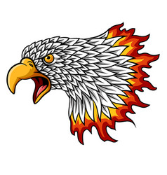 cartoon eagle head mascot with flames vector image