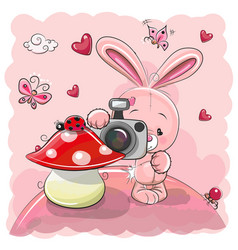 Cute cartoon rabbit with a camera vector