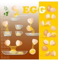 Eggs yolks albumen eggshells glass bowls vector
