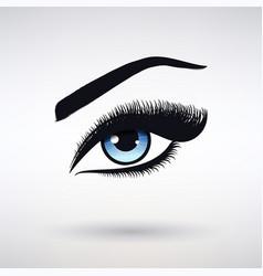 female eye with blue iris and long eyelashes vector image