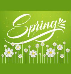 hand drawn lettering spring elegant modern vector image