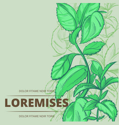 peppermint plants and leaves poster background vector image