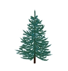 Blue fir tree Christmas symbol New Year On a vector image vector image