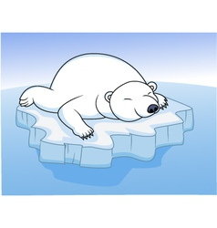 polar bear resting on an ice vector image vector image