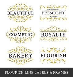 Set of flourish calligraphy frames design vector image vector image