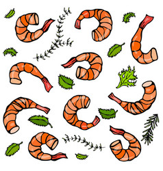 Background with cooked shrimps and herbs vector