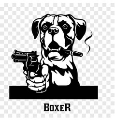 Boxer with guns - boxer gangster head angry vector