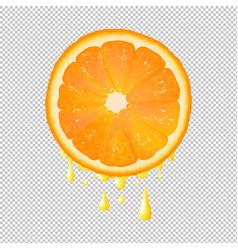 orange slice with juice drops transparent vector image