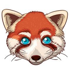 Red panda vector