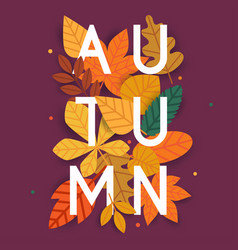 Autumn autumn leafs on the background flat vector