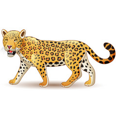 cartoon leopard isolated on white background vector image