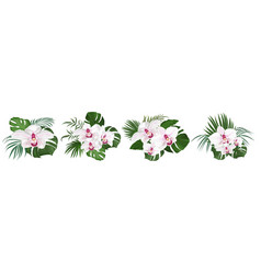 Collection tropical leaves and royal orchids pink vector