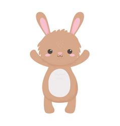 cute little rabbit animal standing cartoon vector image