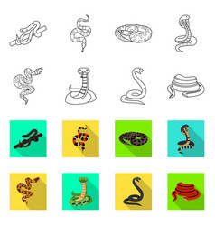 Isolated object snake and creepy logo vector
