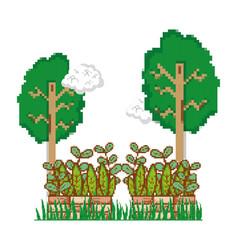 Natural pixels cartoons vector