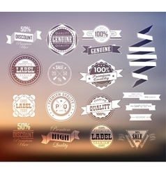 Premium and High Quality Label vector image