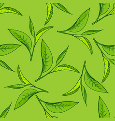 seamless tea leaves pattern vector image