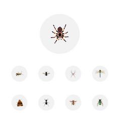 set of bug realistic symbols with wasp pismire vector image