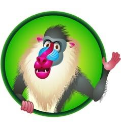 Baboon cartoon vector image vector image