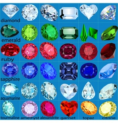 set of precious stones of different cuts and color vector image vector image