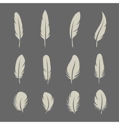 Feathers retro set vector image