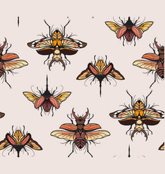 bugs moth butterfly insect animal seamless vector image