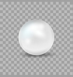 realistic detailed 3d pearl on a transparent vector image