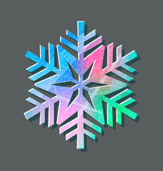 snowflake color logo with texture scratched vector image