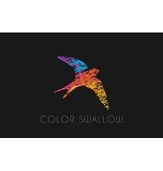 Swallow logo Color swallow logo design Bird logo vector
