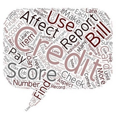 The Importance Of Credit Reports text background vector image