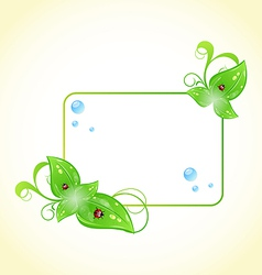 Eco friendly frame with green leaves and ladybugs vector image vector image