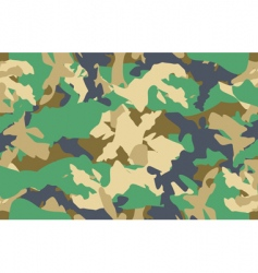 camouflage pattern seamless vector image