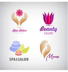 set of cosmetics spa beauty salon vector image